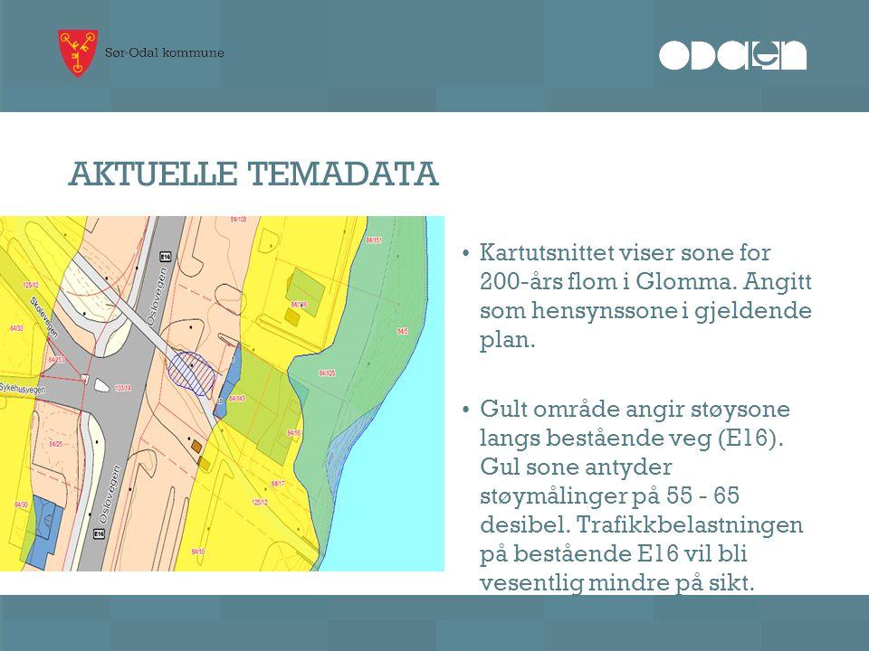 AKTUELLE TEMADATA • Kartutsnittet viser sone for 200-års flom i Glomma. Angitt som hensynssone i gjeldende plan. • Gult område angir støysone langs be