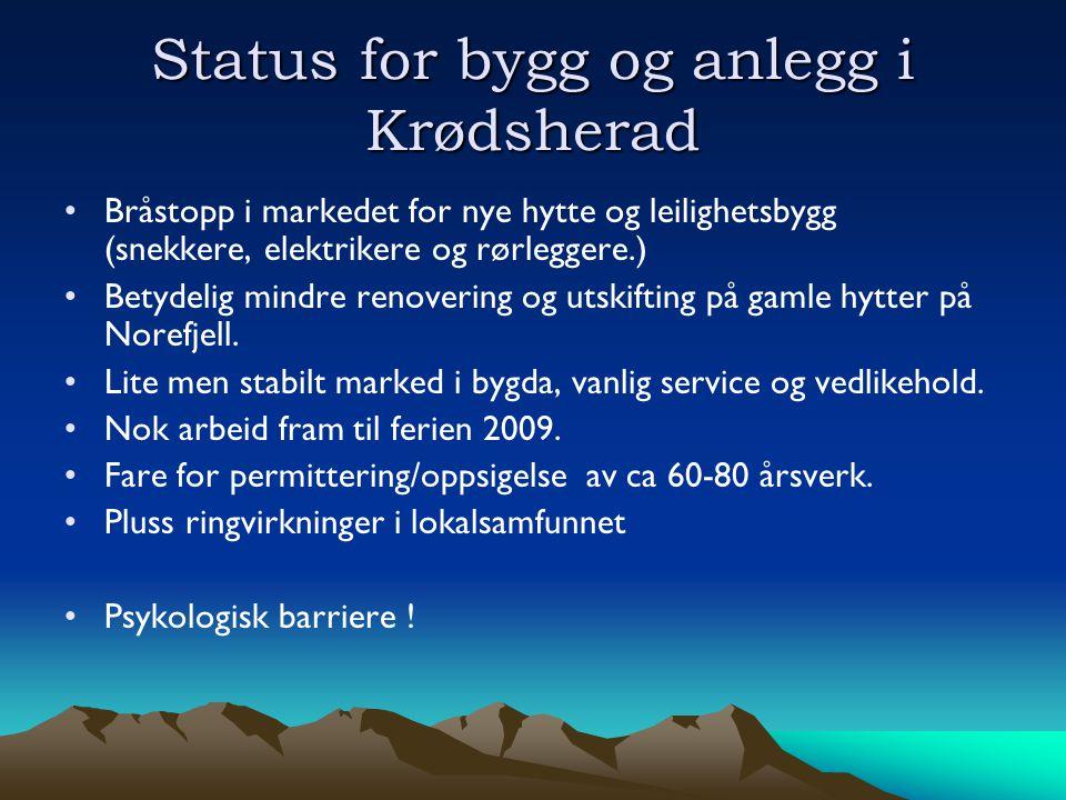 Status for bygg og anlegg i Krødsherad •Bråstopp i markedet for nye hytte og leilighetsbygg (snekkere, elektrikere og rørleggere.) •Betydelig mindre renovering og utskifting på gamle hytter på Norefjell.