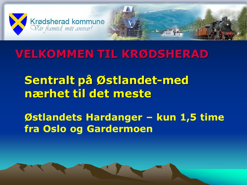 Fakta om Krødsherad kommune