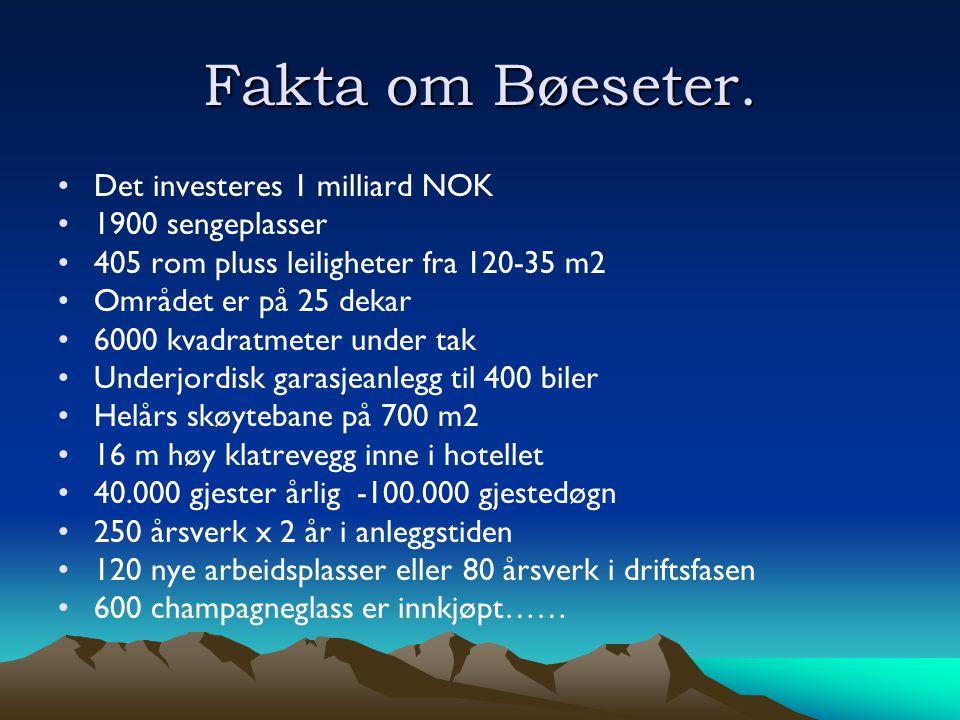 Fakta om Bøeseter.