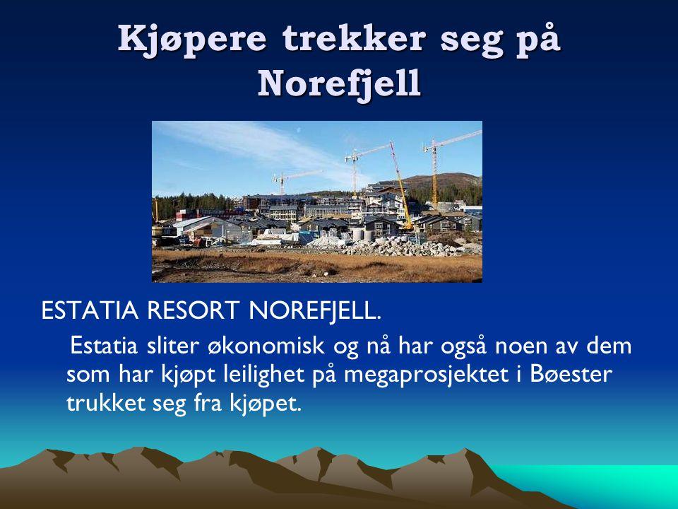 Kjøpere trekker seg på Norefjell ESTATIA RESORT NOREFJELL.