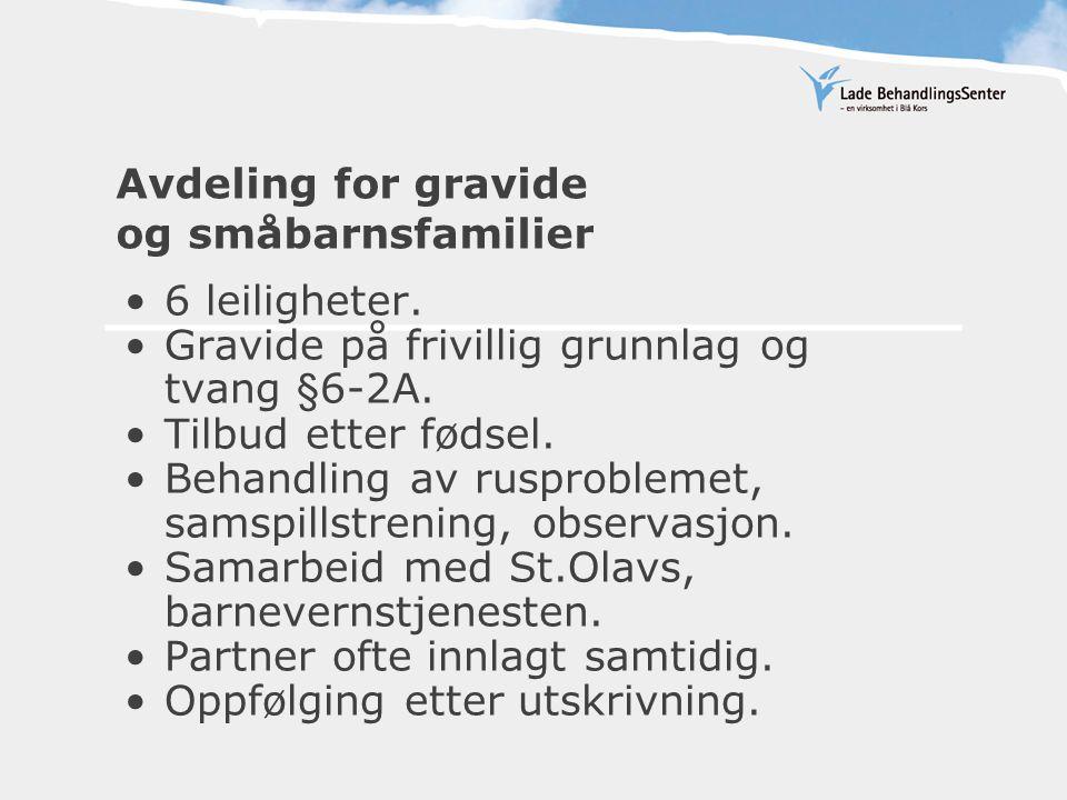 Avdeling for gravide og småbarnsfamilier •6 leiligheter. •Gravide på frivillig grunnlag og tvang §6-2A. •Tilbud etter fødsel. •Behandling av rusproble