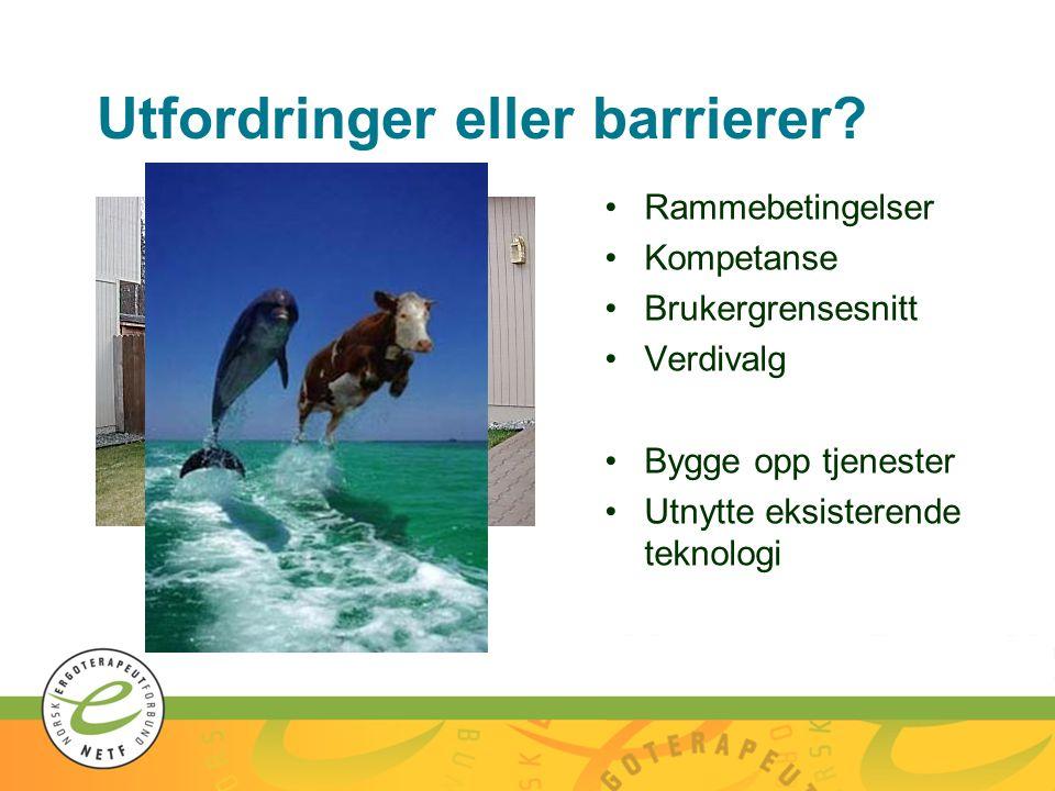 Utfordringer eller barrierer? •Rammebetingelser •Kompetanse •Brukergrensesnitt •Verdivalg •Bygge opp tjenester •Utnytte eksisterende teknologi