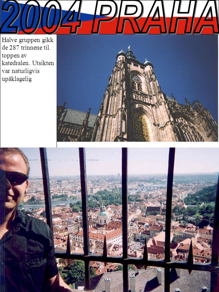 Halve gruppen gikk de 287 trinnene til toppen av katedralen. Utsikten var naturligvis upåklagelig