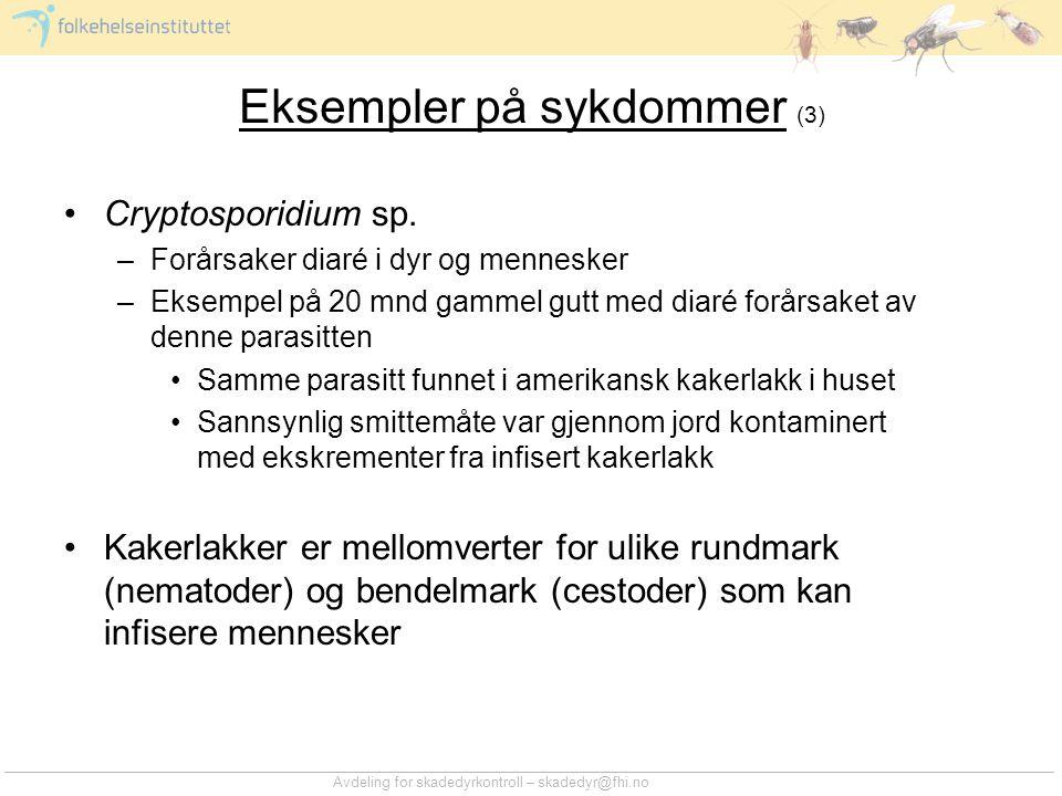 Avdeling for skadedyrkontroll – skadedyr@fhi.no Eksempler på sykdommer (3) •Cryptosporidium sp. –Forårsaker diaré i dyr og mennesker –Eksempel på 20 m