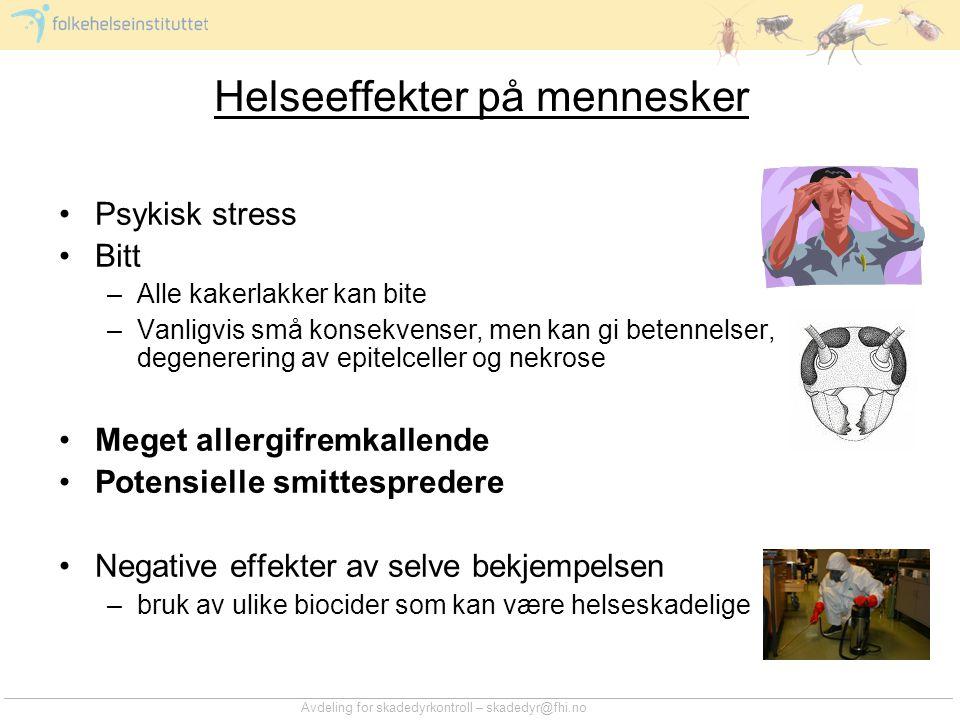 Avdeling for skadedyrkontroll – skadedyr@fhi.no Kakerlakker og allergi •1960/1970-tallet –Hudtester viser reaksjon på kakerlakker –Påviser at kakerlakker er en viktig kilde til allergener innendørs –Finner sammenheng mellom kakerlakkallergi og astma