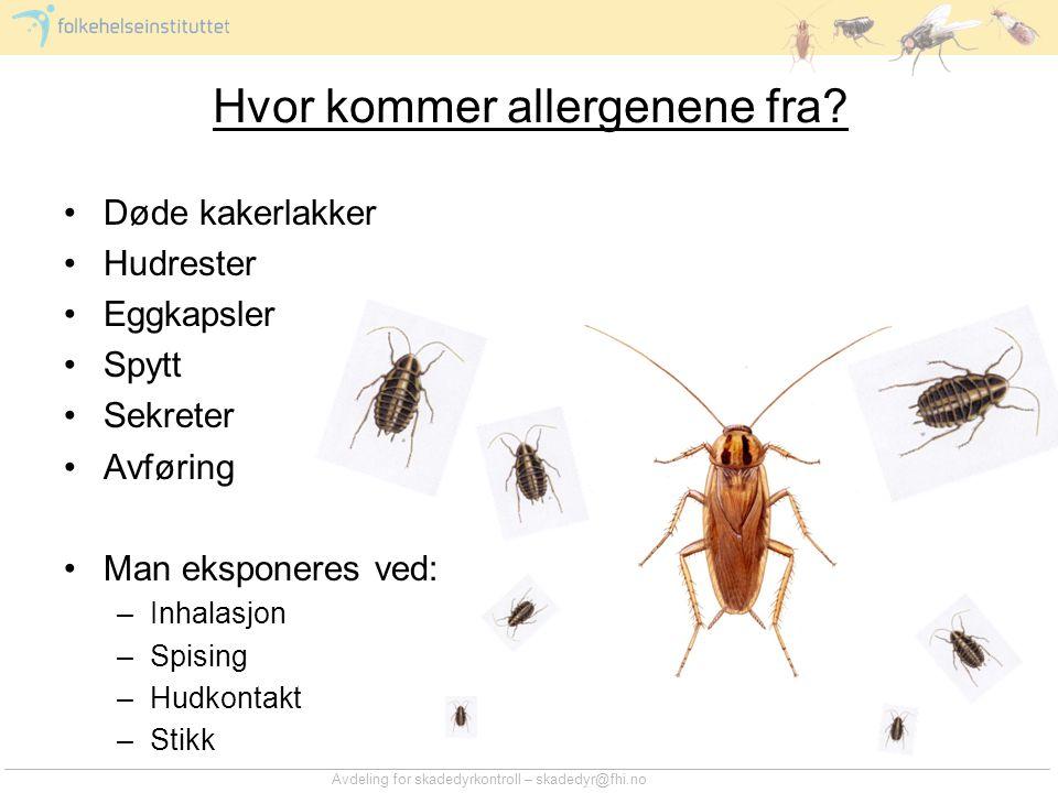 Avdeling for skadedyrkontroll – skadedyr@fhi.no Hvor kommer allergenene fra? •Døde kakerlakker •Hudrester •Eggkapsler •Spytt •Sekreter •Avføring •Man