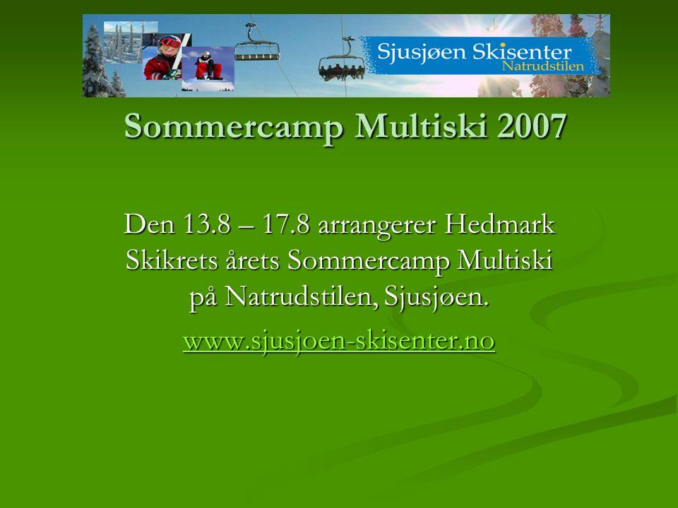 Sommercamp Multiski 2007 Sommercamp Multiski 2007 Den 13.8 – 17.8 arrangerer Hedmark Skikrets årets Sommercamp Multiski på Natrudstilen, Sjusjøen.