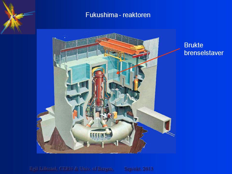 Sep/okt. 2013Egil Lillestøl, CERN & Univ. of Bergen, Fukushima - reaktoren Brukte brenselstaver