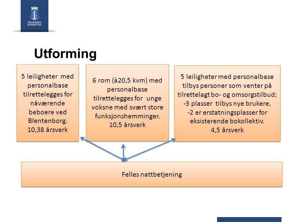 Utforming 6 rom (à20,5 kvm) med personalbase tilrettelegges for unge voksne med svært store funksjonshemminger.