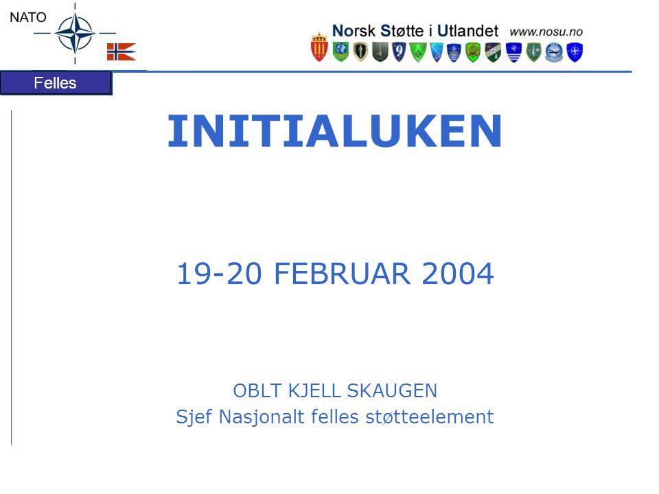 Felles INITIALUKEN 19-20 FEBRUAR 2004 OBLT KJELL SKAUGEN Sjef Nasjonalt felles støtteelement