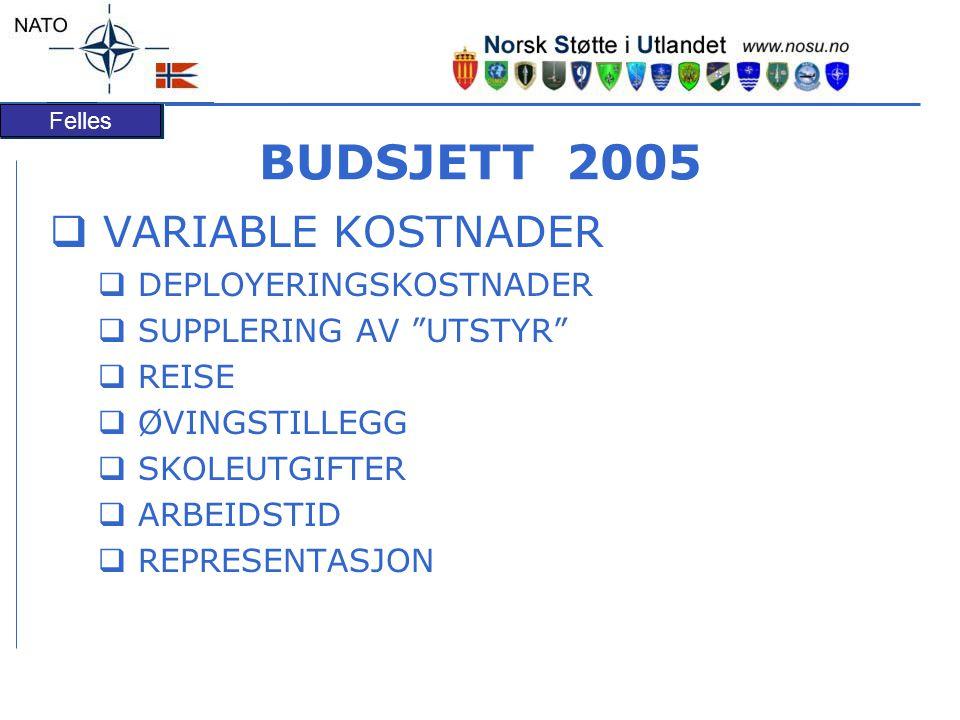 Felles BUDSJETT 2005  VARIABLE KOSTNADER  DEPLOYERINGSKOSTNADER  SUPPLERING AV UTSTYR  REISE  ØVINGSTILLEGG  SKOLEUTGIFTER  ARBEIDSTID  REPRESENTASJON