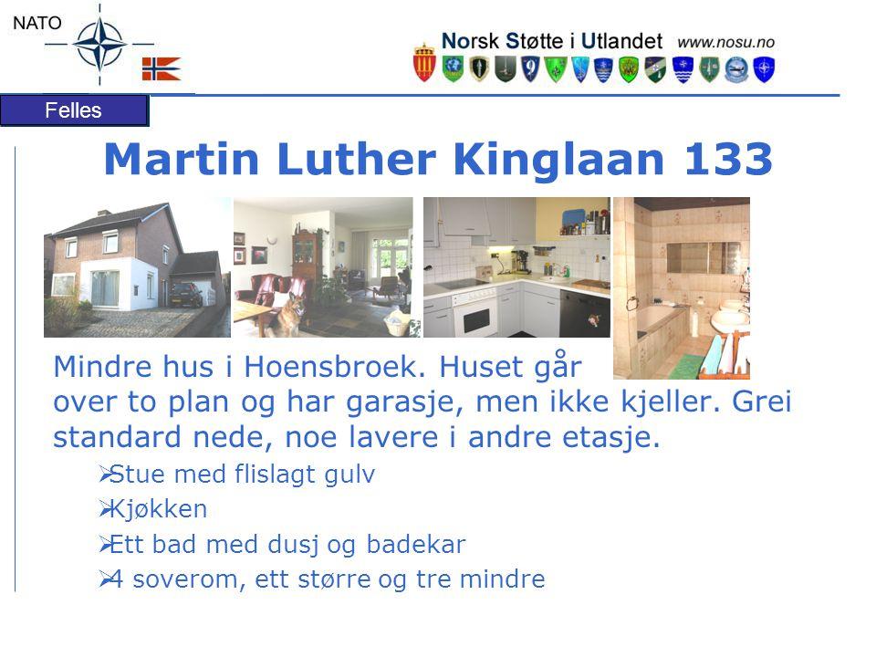 Felles Martin Luther Kinglaan 133 Mindre hus i Hoensbroek.