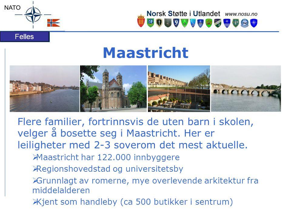 Felles Maastricht Flere familier, fortrinnsvis de uten barn i skolen, velger å bosette seg i Maastricht.