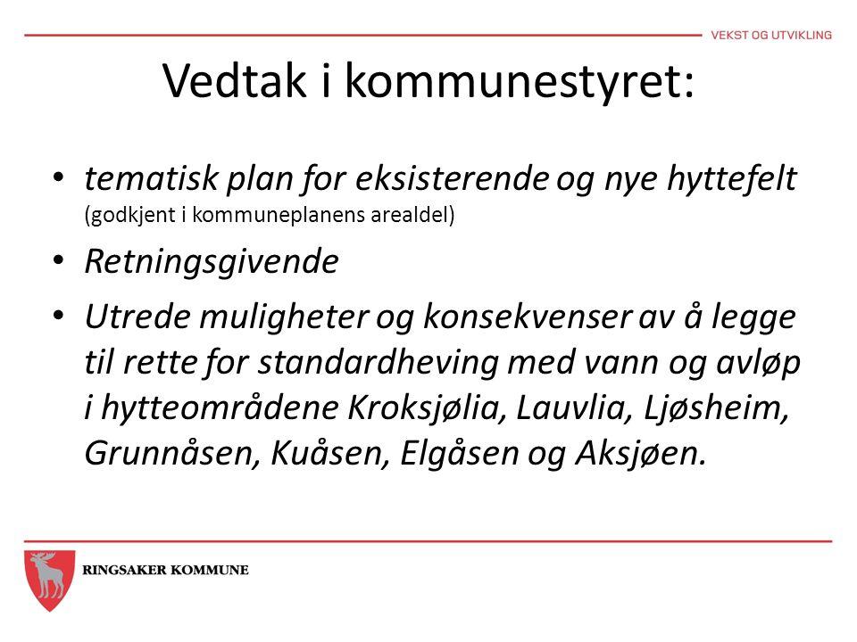 Vedtak i kommunestyret: • tematisk plan for eksisterende og nye hyttefelt (godkjent i kommuneplanens arealdel) • Retningsgivende • Utrede muligheter o