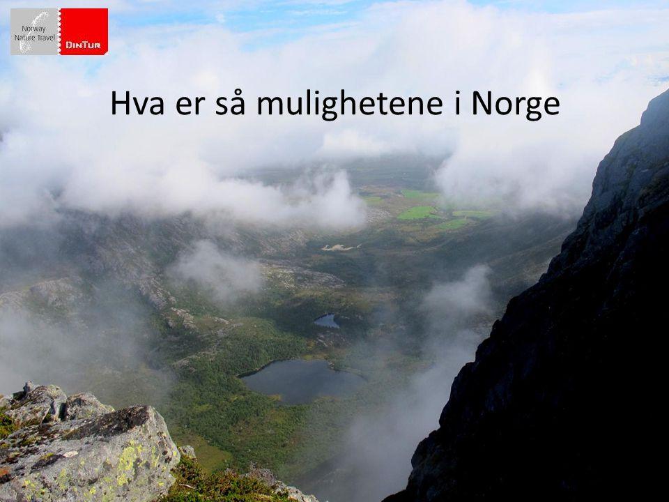 Hva er så mulighetene i Norge