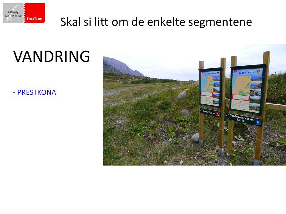 Din Tur besluttet i 2009 å gjøre en skikkelig satsing på Vandring Skal si litt om de enkelte segmentene VANDRING - PRESTKONA