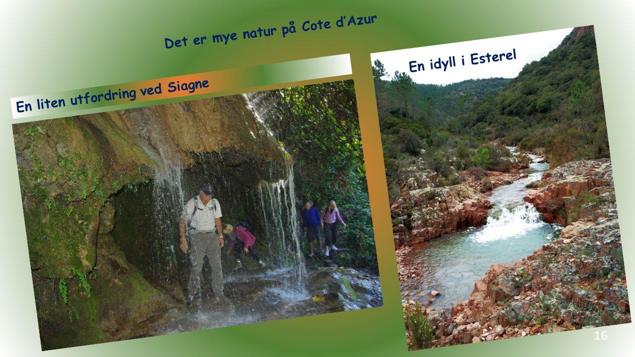 En liten utfordring ved Siagne 16 En idyll i Esterel Det er mye natur på Cote d'Azur