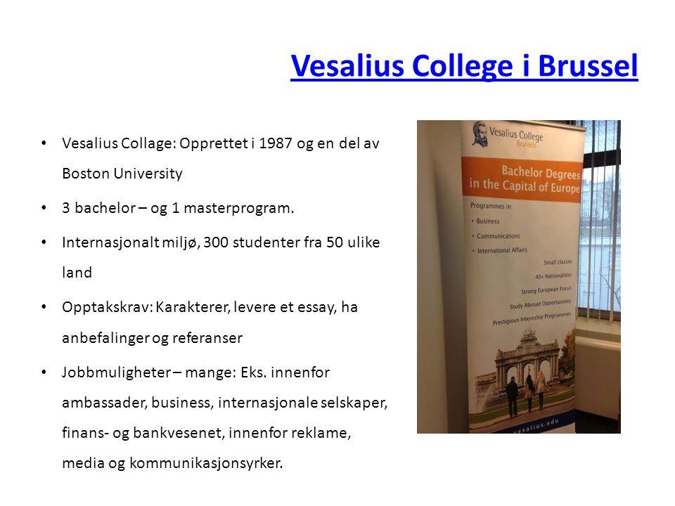 Vesalius College i Brussel • Vesalius Collage: Opprettet i 1987 og en del av Boston University • 3 bachelor – og 1 masterprogram.