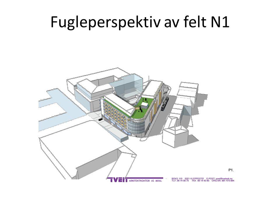 Fugleperspektiv av felt N1