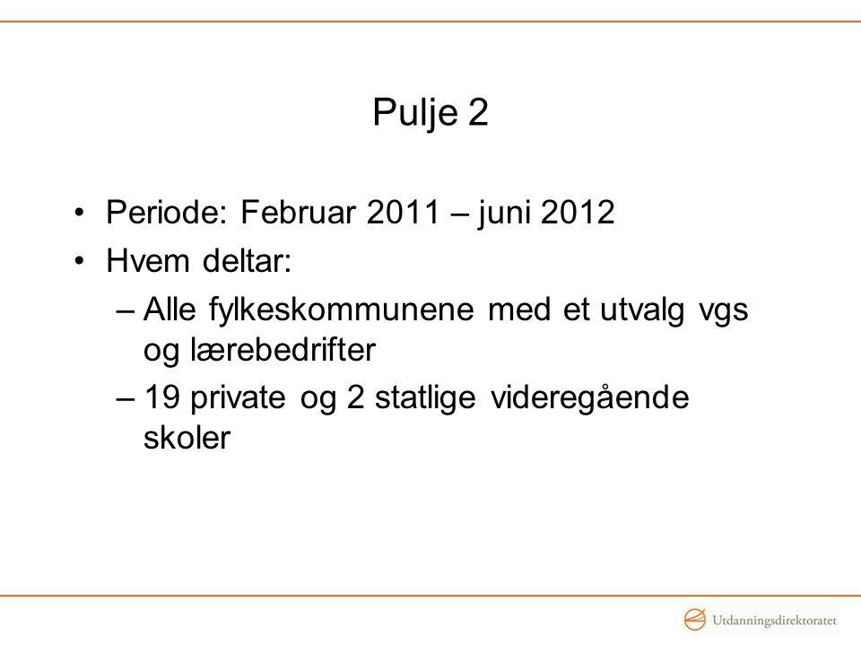 Pulje 2 •Periode: Februar 2011 – juni 2012 •Hvem deltar: –Alle fylkeskommunene med et utvalg vgs og lærebedrifter –19 private og 2 statlige videregående skoler