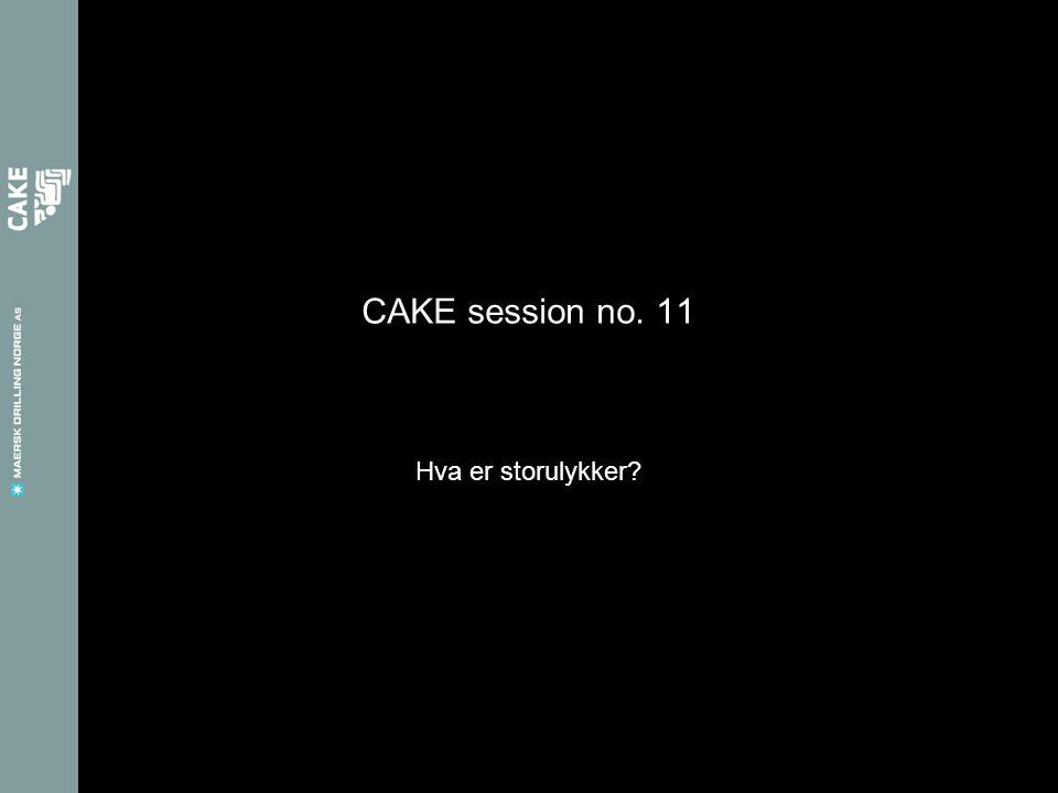 CAKE session no. 11 Hva er storulykker?