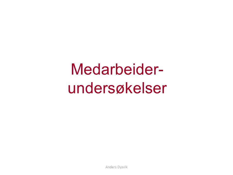 Anders Dysvik Medarbeider- undersøkelser