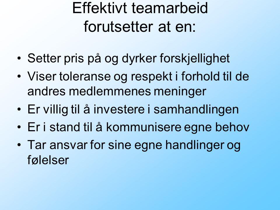 Effektivt teamarbeid forutsetter at en: •Setter pris på og dyrker forskjellighet •Viser toleranse og respekt i forhold til de andres medlemmenes meninger •Er villig til å investere i samhandlingen •Er i stand til å kommunisere egne behov •Tar ansvar for sine egne handlinger og følelser