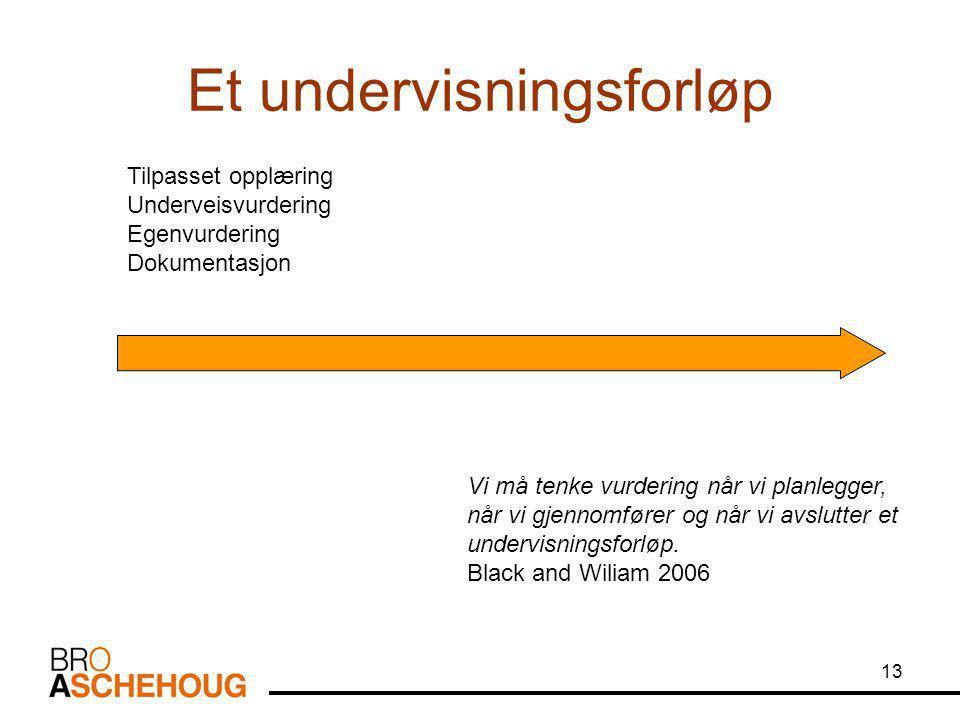 13 Et undervisningsforløp Tilpasset opplæring Underveisvurdering Egenvurdering Dokumentasjon Vi må tenke vurdering når vi planlegger, når vi gjennomfører og når vi avslutter et undervisningsforløp.