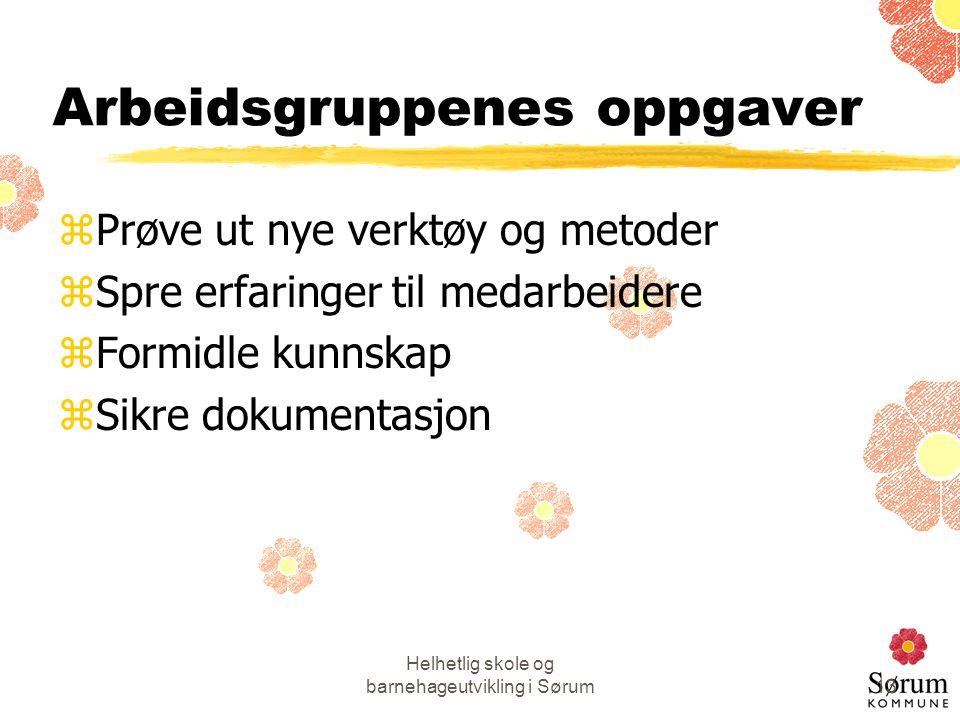 Helhetlig skole og barnehageutvikling i Sørum13 Arbeidsgruppenes oppgaver zPrøve ut nye verktøy og metoder zSpre erfaringer til medarbeidere zFormidle