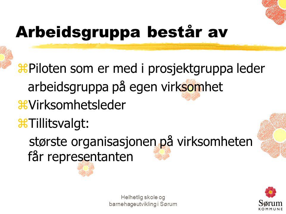 Helhetlig skole og barnehageutvikling i Sørum14 Arbeidsgruppa består av zPiloten som er med i prosjektgruppa leder arbeidsgruppa på egen virksomhet zV