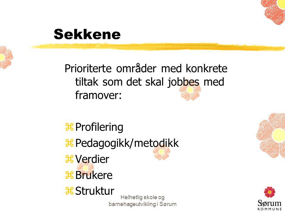 Helhetlig skole og barnehageutvikling i Sørum21 Sekkene Prioriterte områder med konkrete tiltak som det skal jobbes med framover: zProfilering zPedago