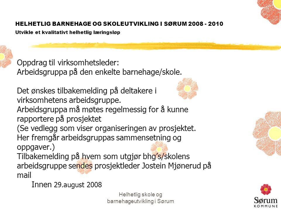 Helhetlig skole og barnehageutvikling i Sørum31 HELHETLIG BARNEHAGE OG SKOLEUTVIKLING I SØRUM 2008 - 2010 Utvikle et kvalitativt helhetlig læringsløp