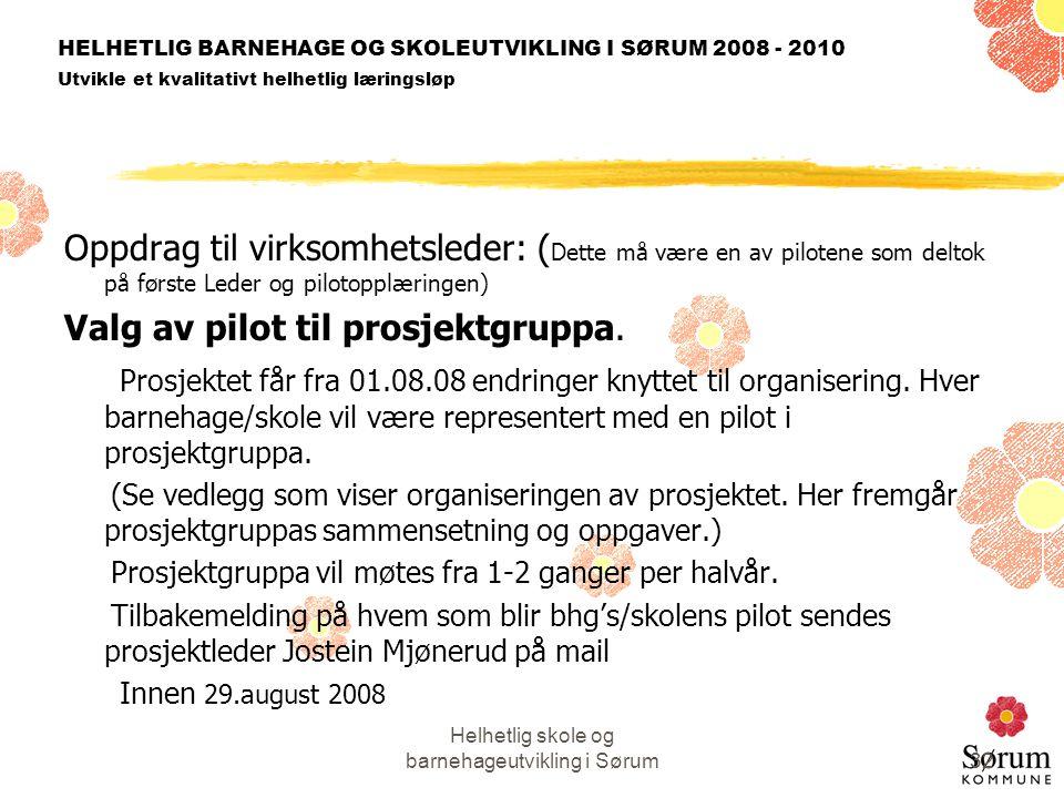 Helhetlig skole og barnehageutvikling i Sørum32 HELHETLIG BARNEHAGE OG SKOLEUTVIKLING I SØRUM 2008 - 2010 Utvikle et kvalitativt helhetlig læringsløp