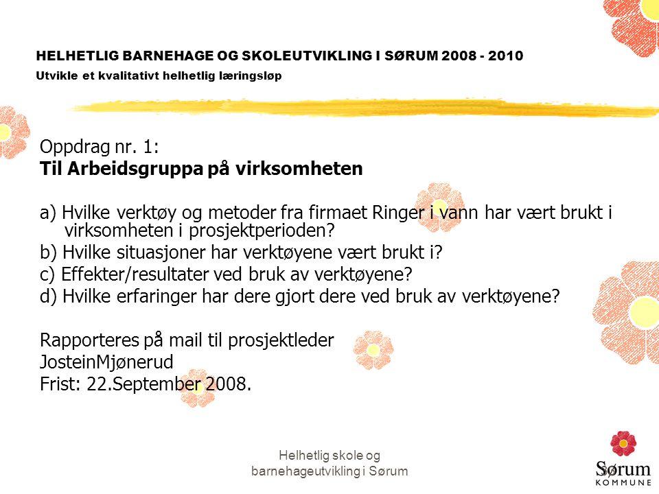 Helhetlig skole og barnehageutvikling i Sørum33 HELHETLIG BARNEHAGE OG SKOLEUTVIKLING I SØRUM 2008 - 2010 Utvikle et kvalitativt helhetlig læringsløp