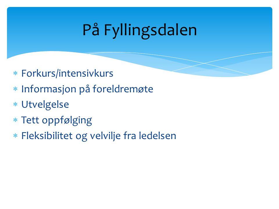  Forkurs/intensivkurs  Informasjon på foreldremøte  Utvelgelse  Tett oppfølging  Fleksibilitet og velvilje fra ledelsen På Fyllingsdalen