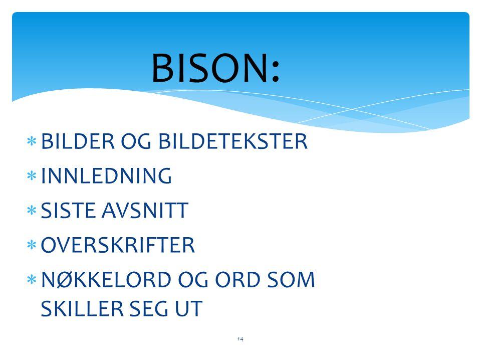 BISON:  BILDER OG BILDETEKSTER  INNLEDNING  SISTE AVSNITT  OVERSKRIFTER  NØKKELORD OG ORD SOM SKILLER SEG UT 14
