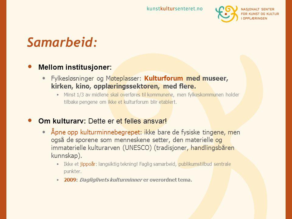 Samarbeid:  Mellom institusjoner:  Fylkesløsninger og Møteplasser: Kulturforum med museer, kirken, kino, opplæringssektoren, med flere.