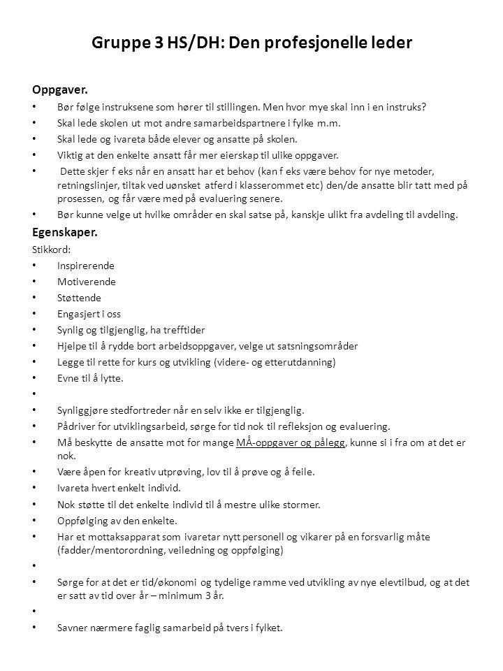 Gruppe 3 HS/DH: Den profesjonelle leder Oppgaver. • Bør følge instruksene som hører til stillingen. Men hvor mye skal inn i en instruks? • Skal lede s