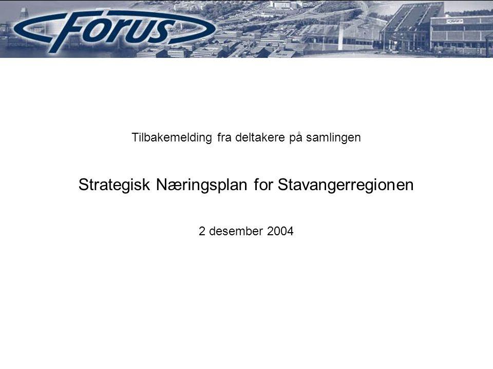 Tilbakemelding fra deltakere på samlingen Strategisk Næringsplan for Stavangerregionen 2 desember 2004
