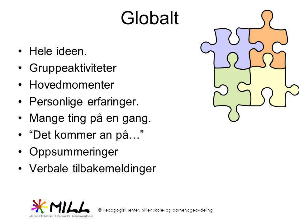 © Pedagogisk senter, Skien skole- og barnehageavdeling Globalt •Hele ideen. •Gruppeaktiviteter •Hovedmomenter •Personlige erfaringer. •Mange ting på e
