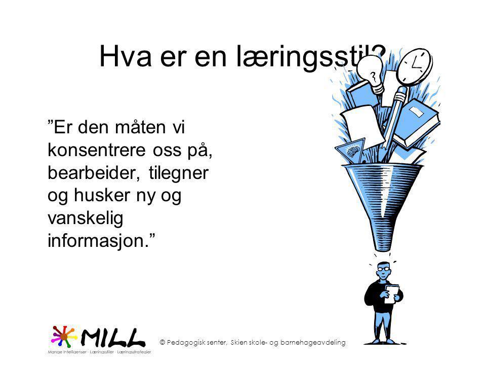 """Hva er en læringsstil? """"Er den måten vi konsentrere oss på, bearbeider, tilegner og husker ny og vanskelig informasjon."""""""