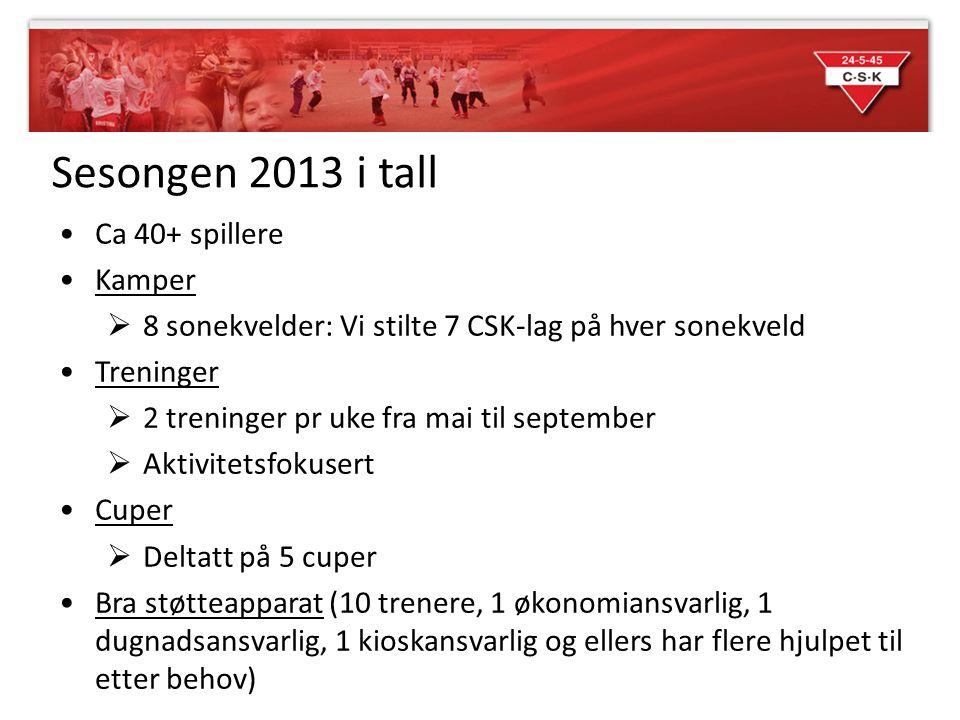 Sesongen 2013 i tall •Ca 40+ spillere •Kamper  8 sonekvelder: Vi stilte 7 CSK-lag på hver sonekveld •Treninger  2 treninger pr uke fra mai til septe