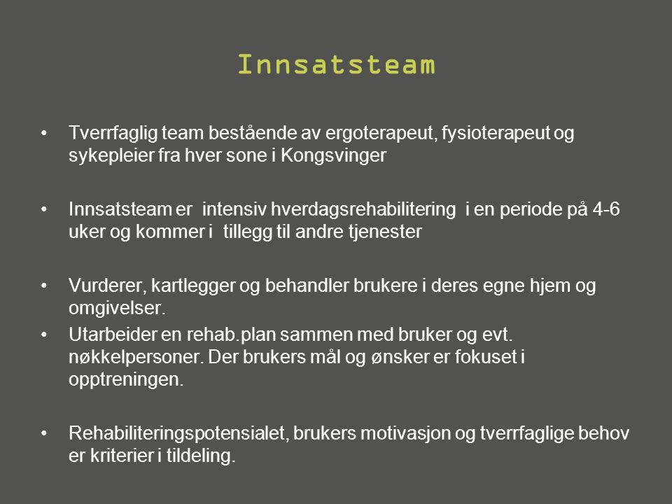 Innsatsteam •Tverrfaglig team bestående av ergoterapeut, fysioterapeut og sykepleier fra hver sone i Kongsvinger •Innsatsteam er intensiv hverdagsreha