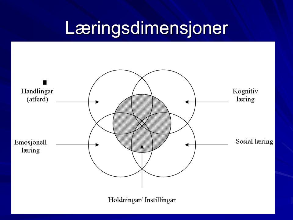 Læring for livskompetanse Dagliglivskompetanse Etisk-moralsk kompetanse Handlingskompetanse Allmenn kompetanse Kreativ kompetanse Sosial - og emosjonell kompetanse Holdningskompetanse