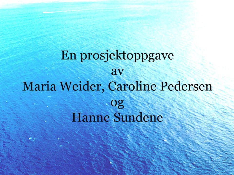 En prosjektoppgave av Maria Weider, Caroline Pedersen og Hanne Sundene