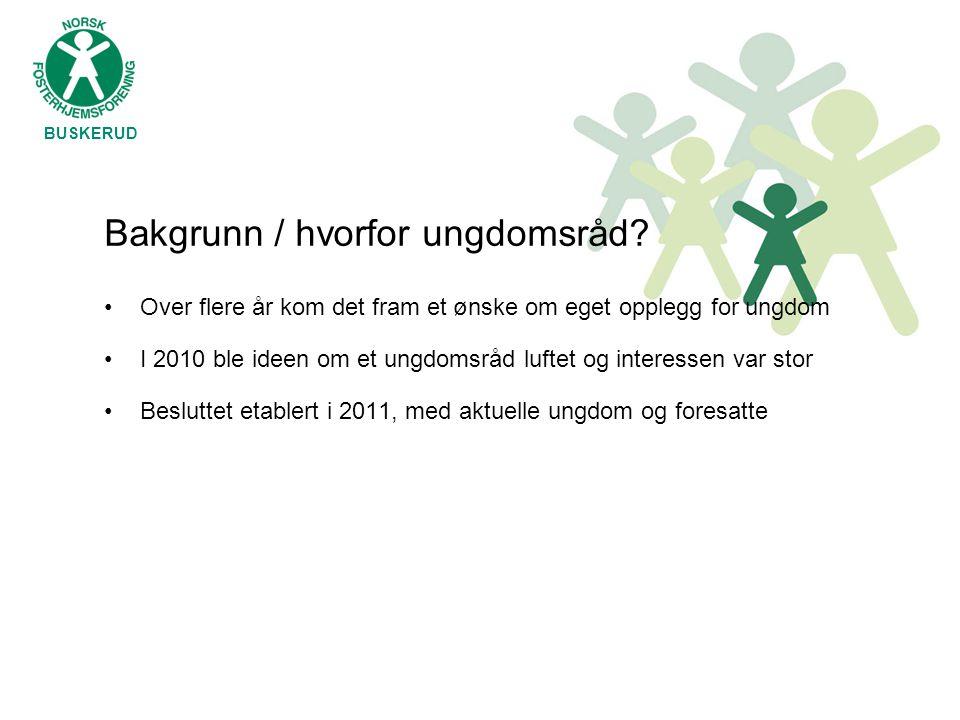 BUSKERUD Bakgrunn / hvorfor ungdomsråd? •Over flere år kom det fram et ønske om eget opplegg for ungdom •I 2010 ble ideen om et ungdomsråd luftet og i