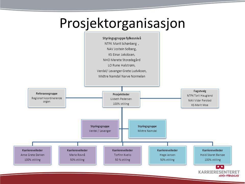 Prosjektorganisasjon Styringsgruppe fylkesnivå NTFK Marit Schønberg, NAV Jostein Solberg, KS Einar Jakobsen, NHO Merete Storødegård LO Rune Halstrøm,