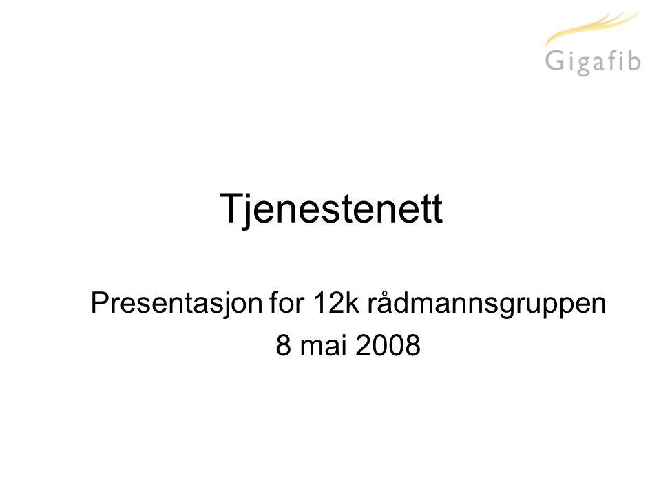 Tjenestenett Presentasjon for 12k rådmannsgruppen 8 mai 2008