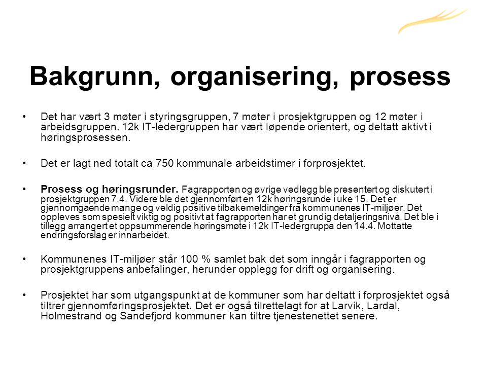 Bakgrunn, organisering, prosess •Det har vært 3 møter i styringsgruppen, 7 møter i prosjektgruppen og 12 møter i arbeidsgruppen.